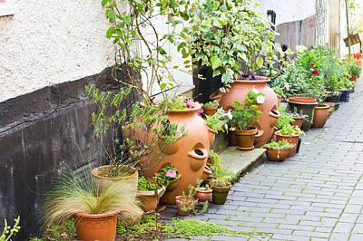 Plant Pots Poster