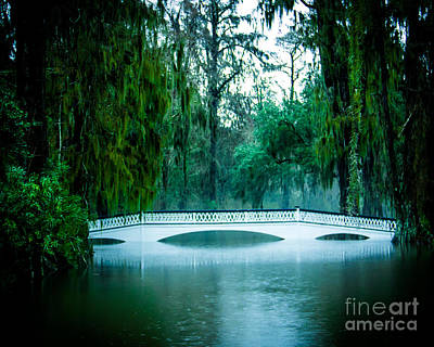 Plantation Bridge Poster by Perry Webster