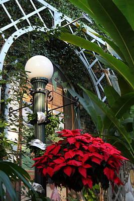 Plants - Us Botanic Garden - 01135 Poster by DC Photographer