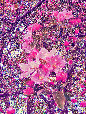 Plastic Wrapped Crabapple Blossom Poster by Minding My  Visions by Adri and Ray