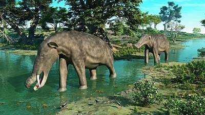 Platybelodon Prehistoric Proboscids Poster by Walter Myers