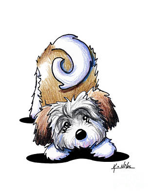 Playful Havanese Poster by Kim Niles
