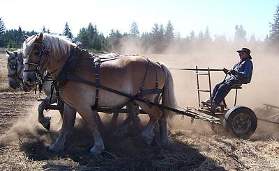 Plough Horses At Work Poster by Peter Mooyman