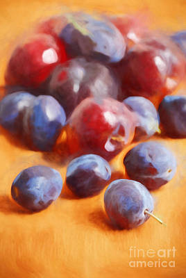 Plums On Orange Poster by HD Connelly