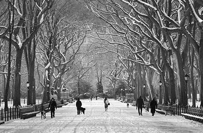 Poster featuring the photograph New York City - Poets Walk Winter by Dave Beckerman