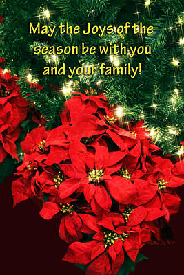 Poinsettia Christmas Card Poster
