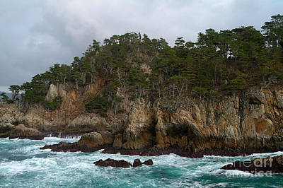 Point Lobos Coastal View Poster
