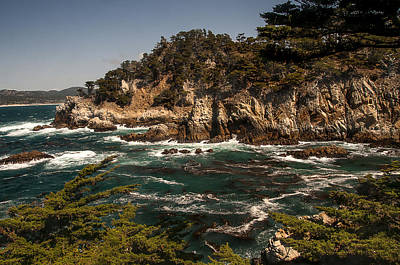 Poster featuring the photograph Point Lobos by Lee Kirchhevel