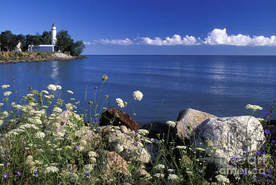 Pointe Aux Barques And Summer Wildflowers - Fs000823 Poster by Daniel Dempster