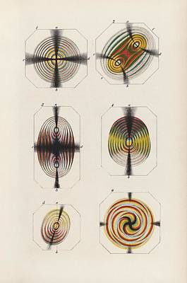 Polarized Light Experiments Poster by King's College London