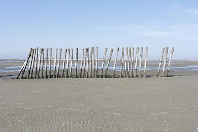 Poles On The Sandbar Poster by Ronald Jansen