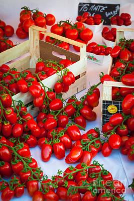 Pomodori Italiani Poster by Inge Johnsson