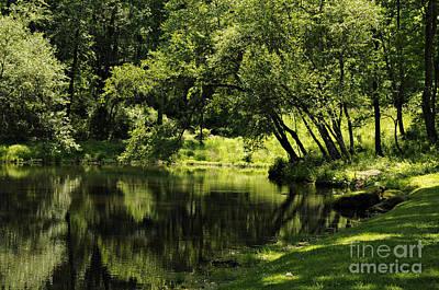 Pond At Glen Oaks Farm Poster by Addie Hocynec