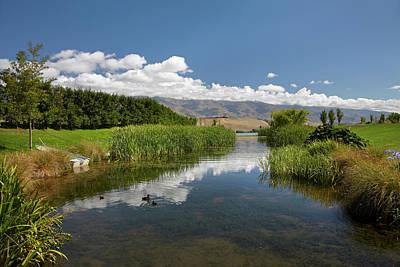 Pond At Northburn Vineyard, Central Poster