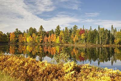Pontook Reservoir - Dummer New Hampshire Poster by Erin Paul Donovan