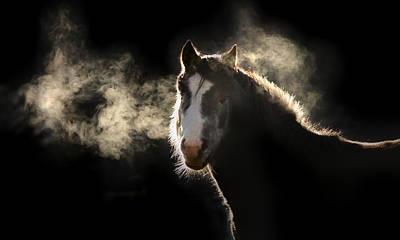 Pony Poster by Marc Huebner