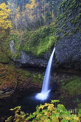 Ponytail Falls Poster