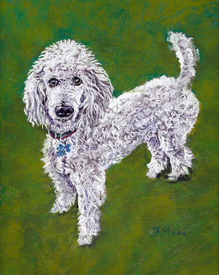 Poodle Pal Poster by Julie Maas
