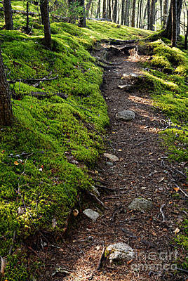 Portage Path Poster by Larry Ricker