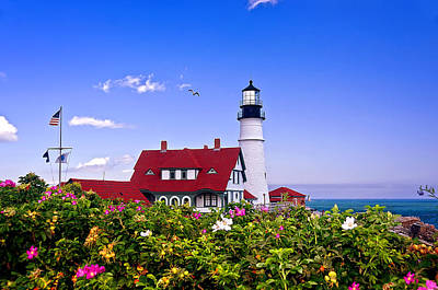 Portland Head Light And Roses Poster