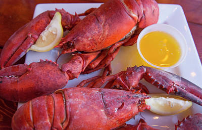 Portland, Maine, Lobster Dinner Poster