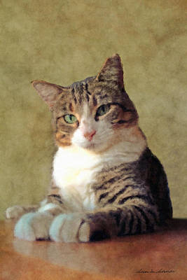 Portrait Of A Cat Poster by Susan Schroeder