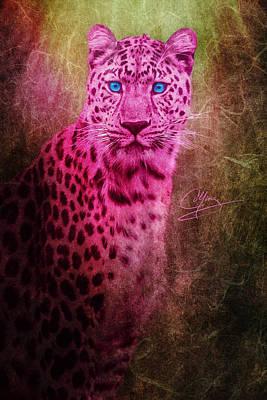 Portrait Of A Pink Leopard Poster