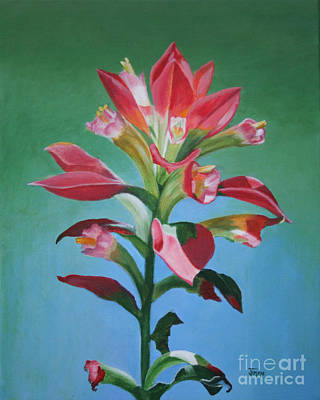 Poster featuring the painting Portrait Of An Indian Paintbrush by Jimmie Bartlett
