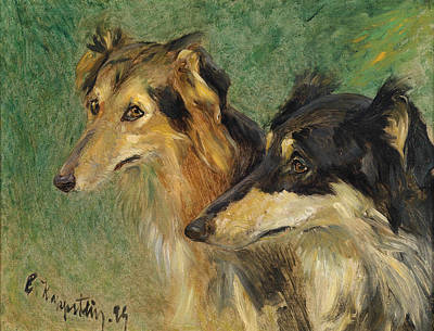 Portrait Of Two Borzoi Dogs Poster