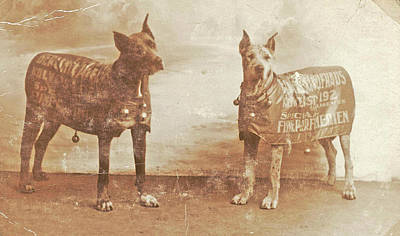 Portrait Two Dogs Toymaker With Advertising Copy Poster by Artokoloro