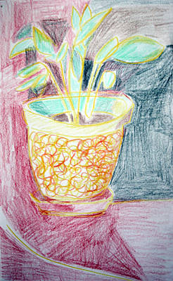 Potted Plant Still Life With Drapery Poster by Anita Dale Livaditis