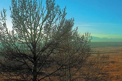 Prairie Autumn 7 Poster by Terry Reynoldson