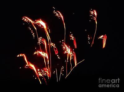 Prairie Grass Fireworks Poster by Brigitte Emme