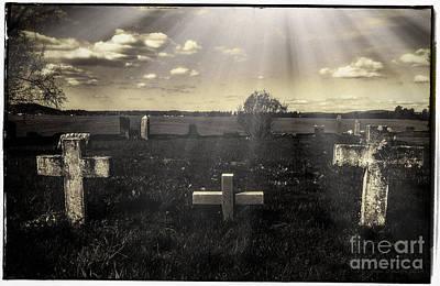 Prairie Graves Poster by Jean OKeeffe Macro Abundance Art