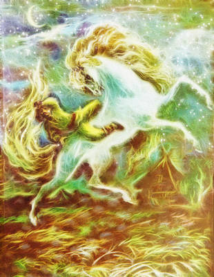 Prancing White Horse Poster by Pati Photography