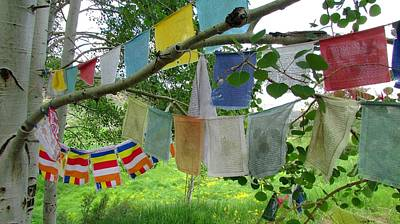 Poster featuring the photograph Prayer Flags And Aspen by Brenda Pressnall