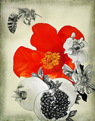 Precious Fruits New And Old Poster by Sarah Wathen