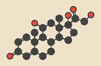 Prednisolone Corticosteroid Drug Molecule Poster
