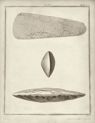 Prehistoric Stone Tools Poster by Middle Temple Library
