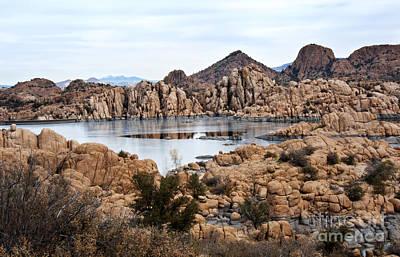 Prescott Arizona Winter Dells I Poster by Lee Craig