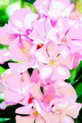 Pretty In Pink Poster by Christina Ochsner