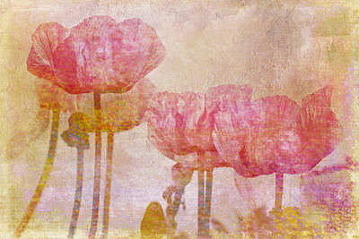 Pretty Poppy Garden Poster by Peggy Collins