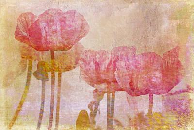Pretty Poppy Garden Poster