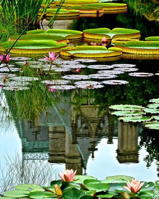 Prince Charmings Lily Pond Poster