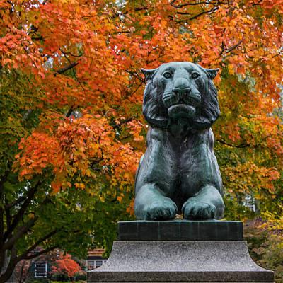 Princeton Panther Poster