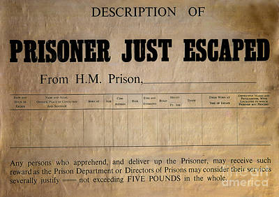 Prisoner Escaped Poster by Adrian Evans