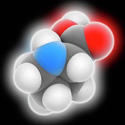 Proline Molecule Poster by Laguna Design