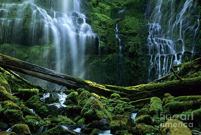 Proxy Falls Poster by Bob Christopher