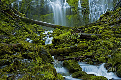 Poster featuring the photograph Proxy Falls by Nick  Boren