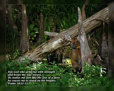 Psalm 18 32-33 Poster by Dawn Currie
